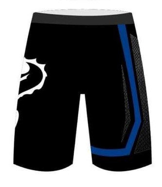 Fight Shorts - Competitor Blue