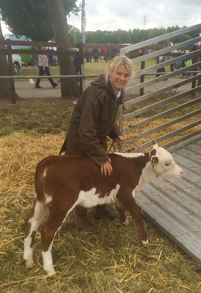 CattleShowOswestry.Aug20157.jpg