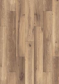 1538 Alamos Oak.jpg