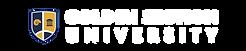 GSU logo-white_gst logo copy 2.png