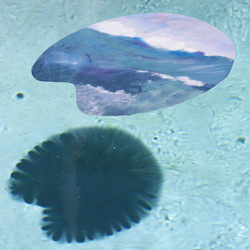 Floating Horizontal