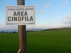 Area Cinofila