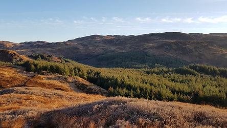 Caccia in Scozia - La Beccaccia Associaz