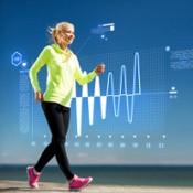 Top Wellness Program Components