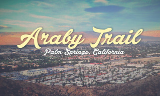 The Micro-Market: Araby, Palm Springs 92264