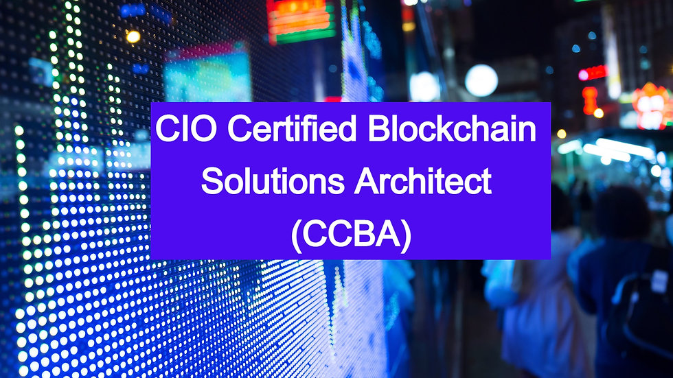 300-Level Course Bundle: Blockchain Solutions Architect Program (CCBA)