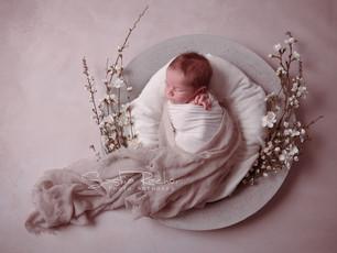 Erste Babyfotos - Besondere Momente mit einem sehr neugierigem kleinen Welteroberer - Fotografie Erb