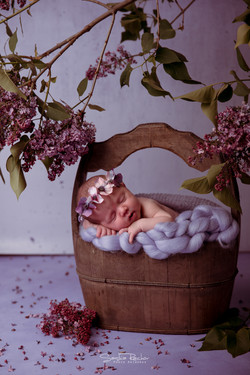 Babyfotos Neugeborenenfotis Otzberg