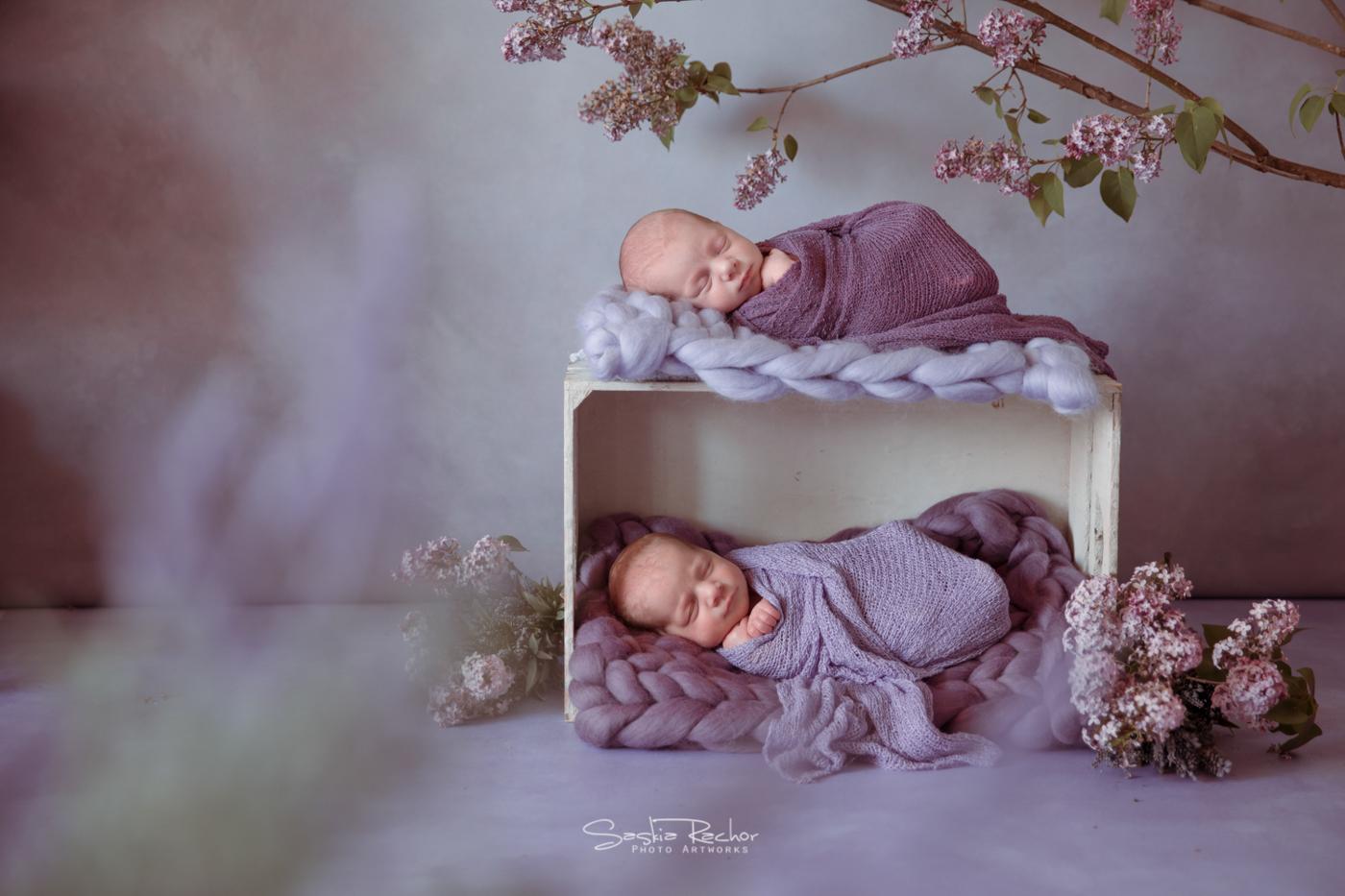 Babyfotos Höchst, Michelstadt