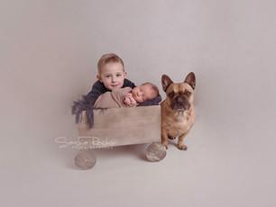 Neugeborenenfotos mit großem Bruder, Hund und Äffchen - Familien und Neugeborenenfotografie Dieburg