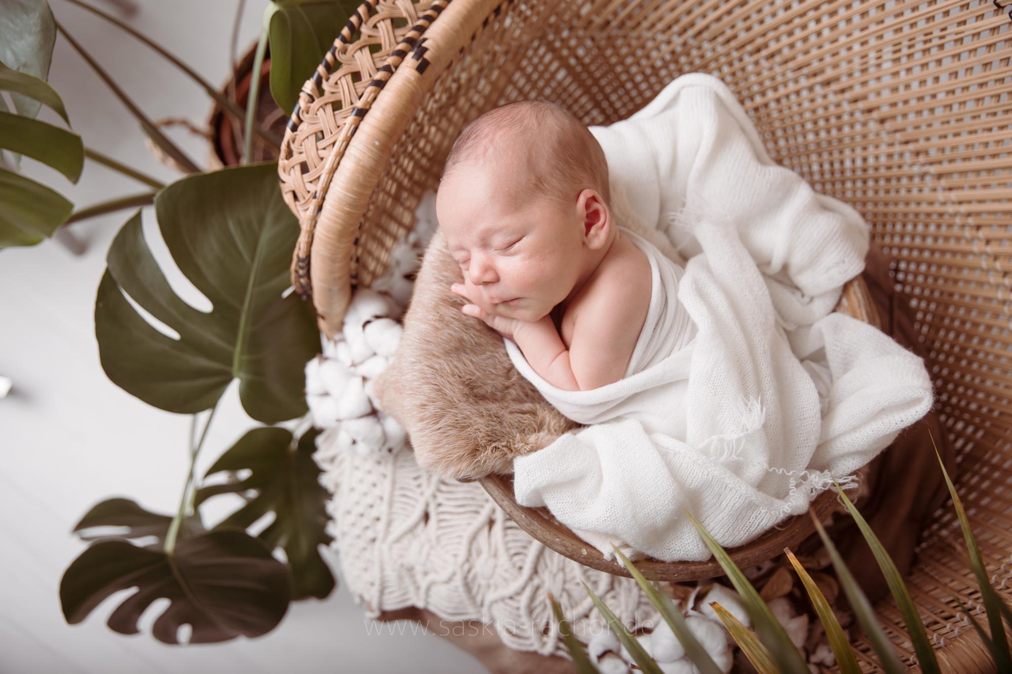 Babyfotos Darmstadt