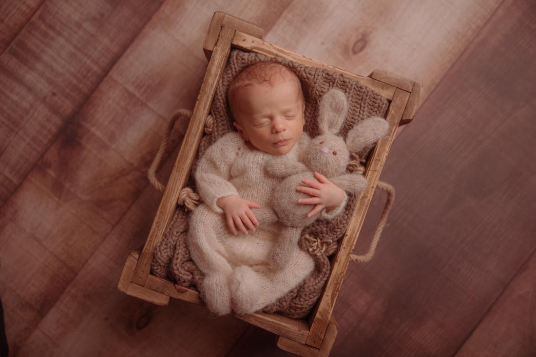 Neugeborenenfotos Münster