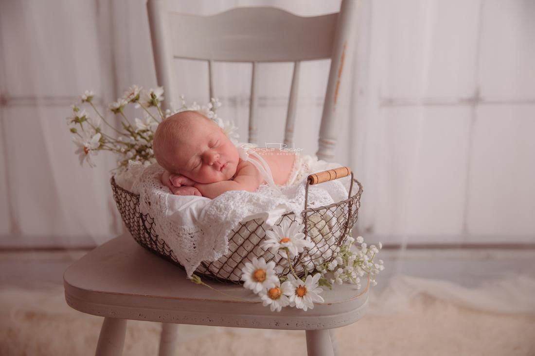 Neugeborenenfotos Offenbach