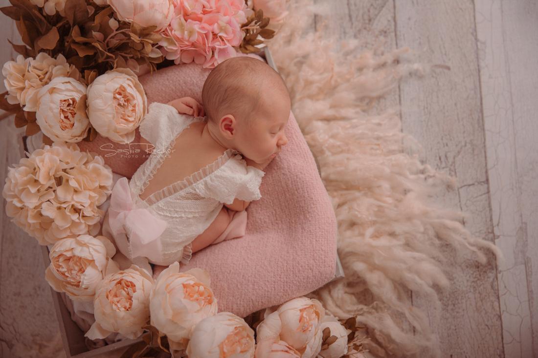 Neugeborenenfotografie Seligenstadt