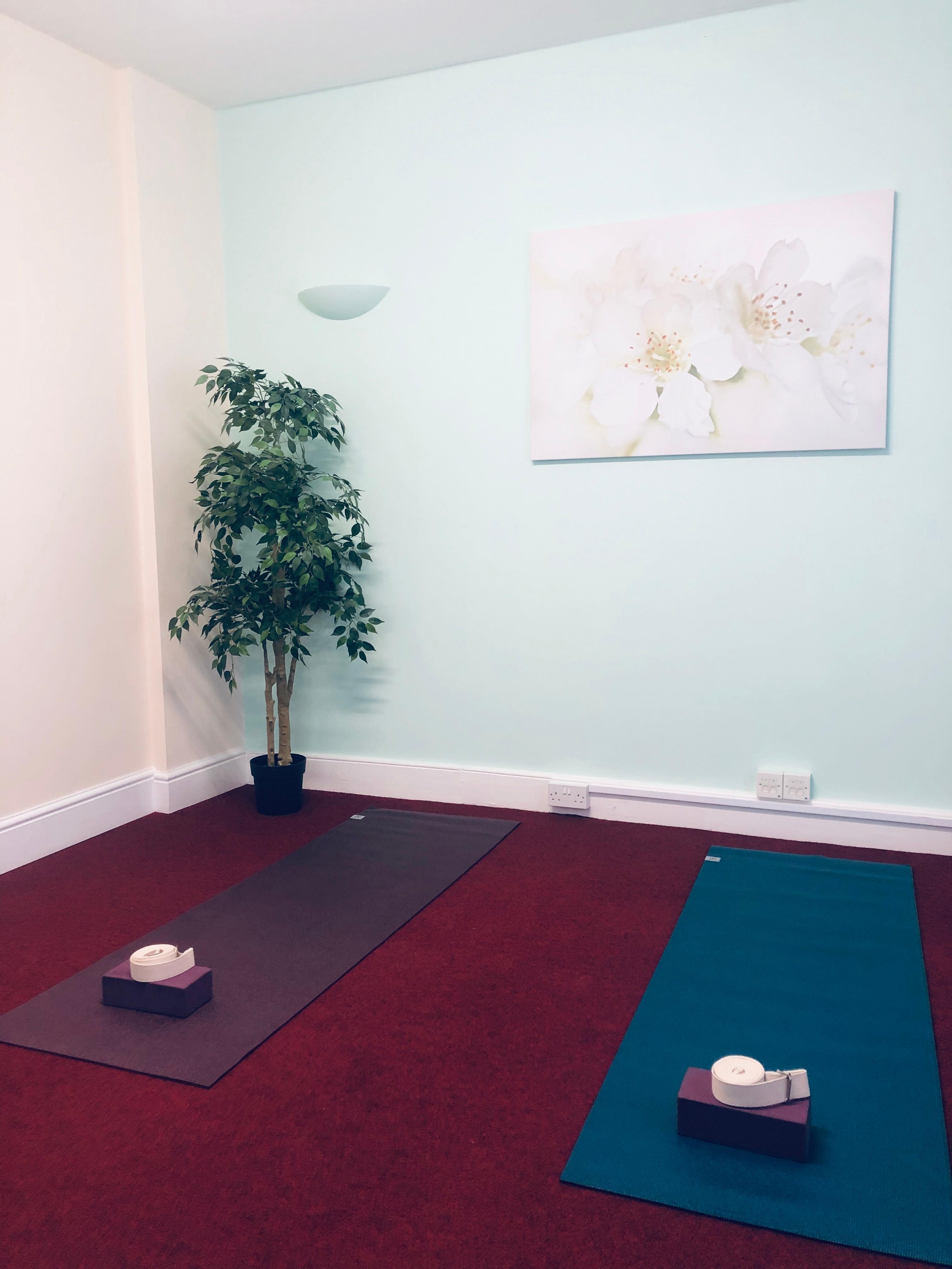 Private 1:1 or 2:1 Yoga Sessions (WTC)