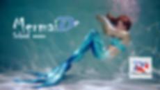 MermaiD+_wix.png