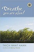 breathe you are alive tnh.jpg