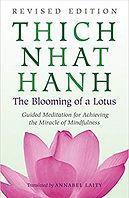 blooming of a lotus TNH.jpg
