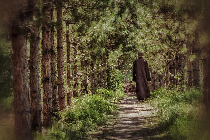 buddhist monk walking on a path.jpg
