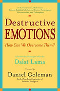destructive emotions dalai lama.jpg