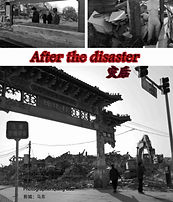 After The Disaster.jpg