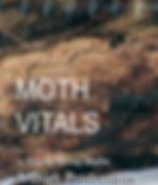 MOTH VITALS .jpg