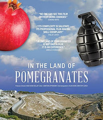 In The Land of Pomegranates.jpg