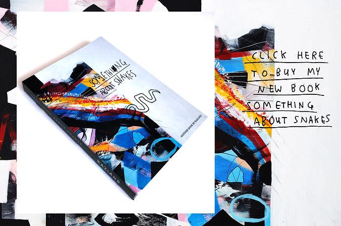 book promo site.jpg