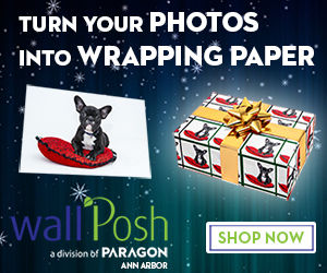 wrapping paper dog 300.jpg