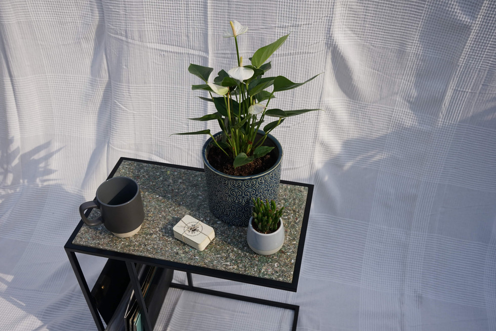 Side Table With Plants-min.JPG