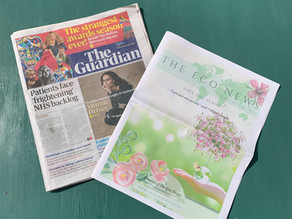 Blog Post: The Guardian & The Eco News Features