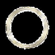 pngtree-gold-circle-png-image_567102_edi