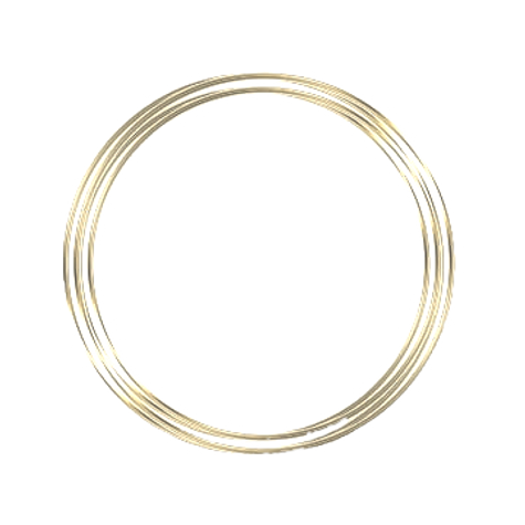 pngtree-gold-circle-png-image_567102_edi