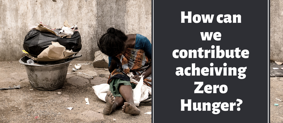 How can we contribute to achieving Zero Hunger?