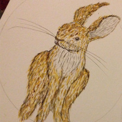 Hare Past A Freckle