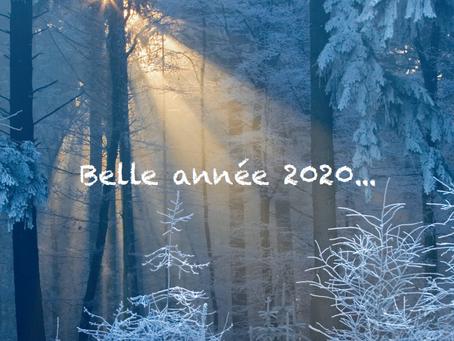 Votre ostéopathe vous souhaite une belle année 2020 !