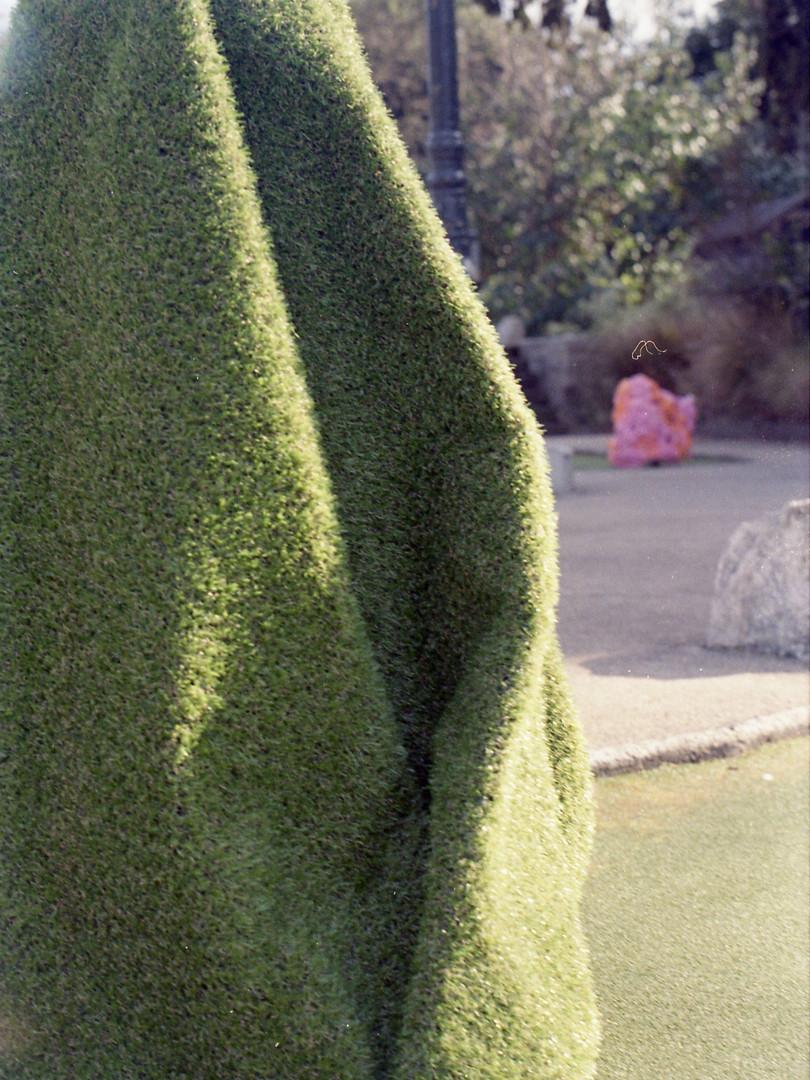 Hidden Serpent (3 of 3).jpg