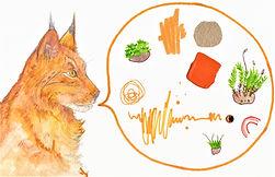 Lynx talk.jpg