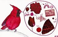 Cardinal talk.jpg