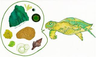 Turtle talk.jpg