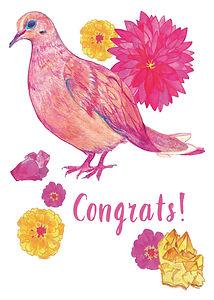 Susan Carter Dove Congrats.jpg
