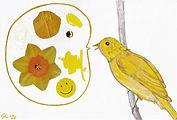 Canary talk.jpg