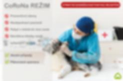 Snímek obrazovky 2020-03-16 v8.51.39.pn