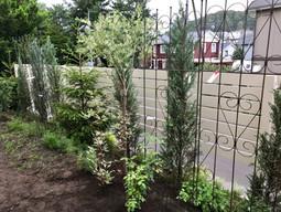 南区 個人宅-木製フェンス設置・植物植え込み-南区個人宅.JPG