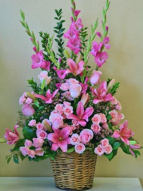 Lovely Rosita