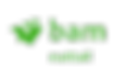 BamNuttall-Logo-png.png