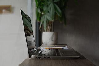 Laptop%20Plant%20Reflection_edited.jpg