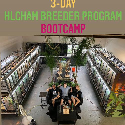 3-DAY (14hr) Bootcamp - HLCham Breeder Program