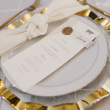 DFW Wedding and Event Planner82120-131 - Copy -