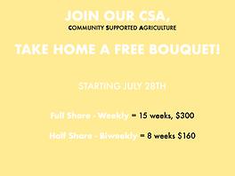 CSA Share